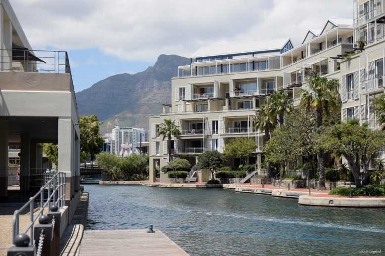 The expensive apartments by the canals in Waterfront in Cape Town.
