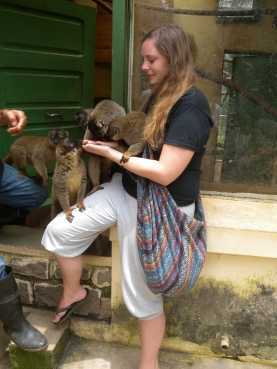 Hanging out with Common Brown Lemurs in Antananarivo zoo.