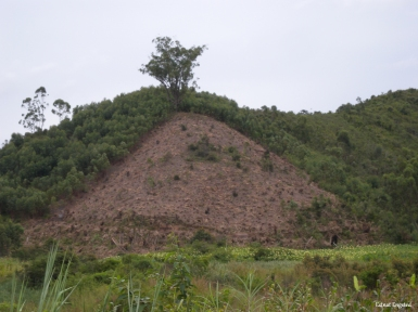 The environmental result of logging for charcoal, Madagascar.