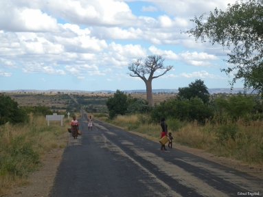 The road close to Zombitse-Vohibasia National Park, Madagascar.