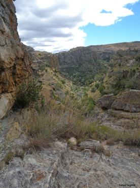 From the walk into the gorge where we had our lunch, Isalo National Park.